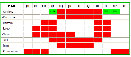 Pratiche colturali cactus e dintorni il sito per - Calendario semina fiori ...